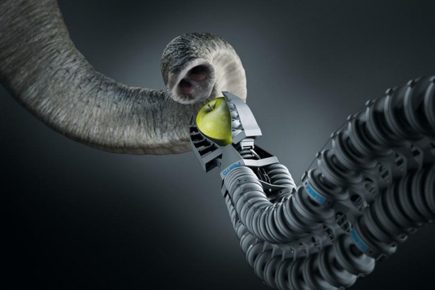 bionic-handling-assistant-flexible-gripper-625x625